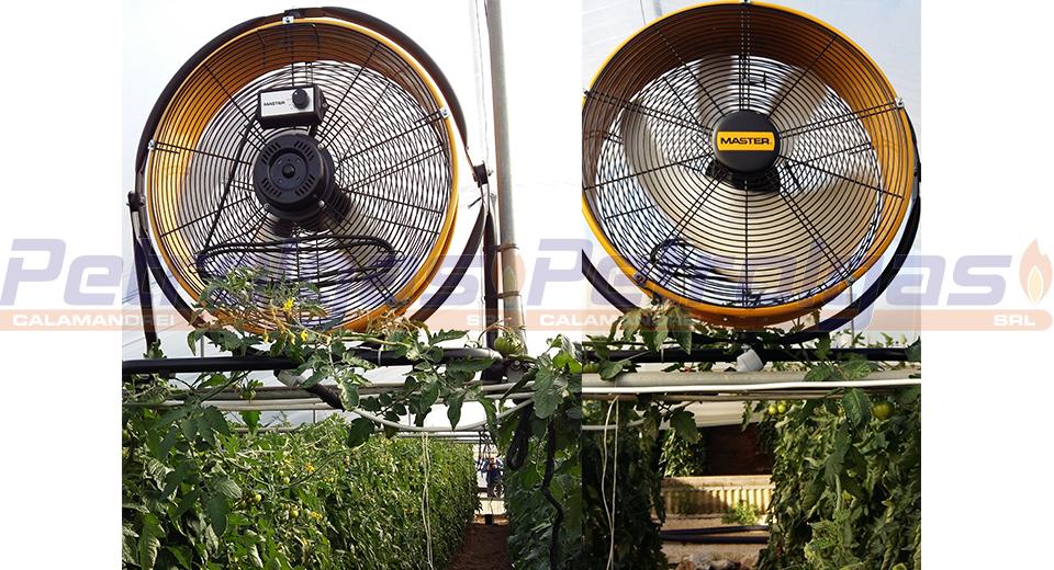 Ventilatore Professionale - Master DF 20